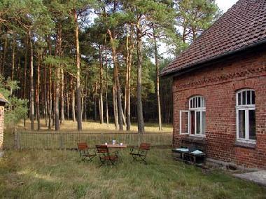 ferienhaus hohenwoos ferienhaus waldhof ferienhaus deutschland ferienhaus mecklenburg schwerin. Black Bedroom Furniture Sets. Home Design Ideas