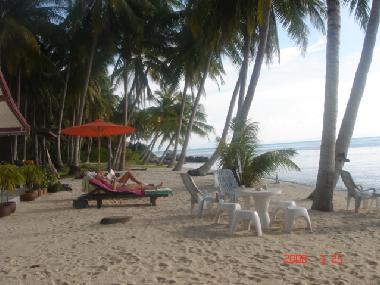 ferienhaus koh samui taling ngam koh samui beach cottage. Black Bedroom Furniture Sets. Home Design Ideas