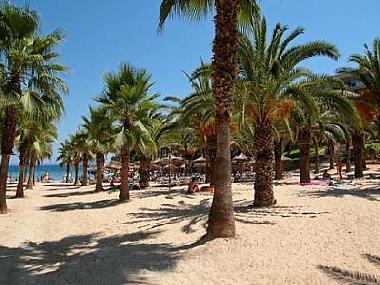 Mallorca Wohnung Mieten Billig