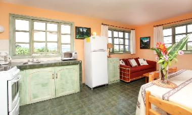 Apartment: K�che mit Salon und Essecke