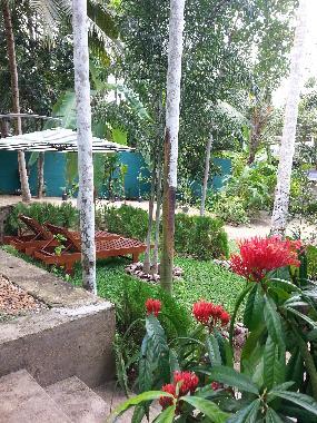 ferienhaus hikkaduwa gonipinuwala woodland villa ferienhaus sri lanka ferienhaus galle. Black Bedroom Furniture Sets. Home Design Ideas